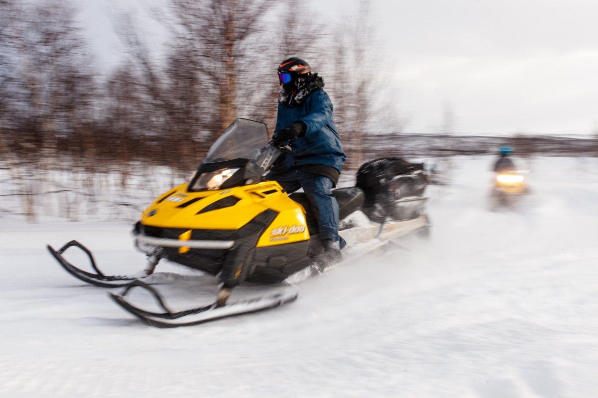 Прокат/аренда снегохода, тур Саамские тропы, Рыбачий и др - Мурманск, заказать или взять в аренду